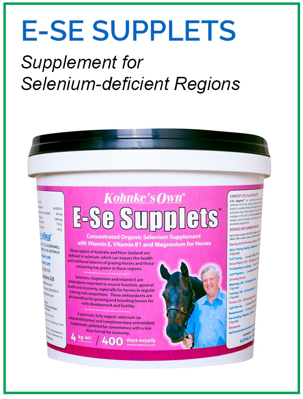 Supplement for Growing and Breeding Horses