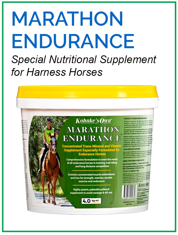 Supplements for Racing Horses