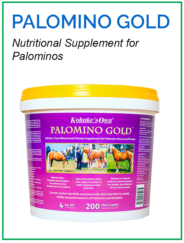 Supplement for Common Problems